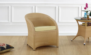 Latonya Outdoor Chair